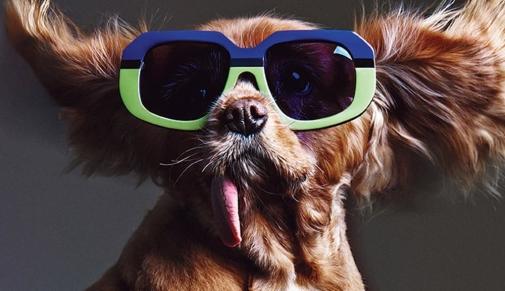 Как выбрать очки по размеру и что нужно знать о посадке очков ?